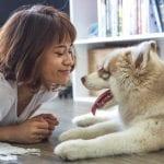 Heb jij ook een bijzondere hond? Vertel het ons!
